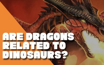 Are Dragons Real? Dinosaurs VS Dragons.