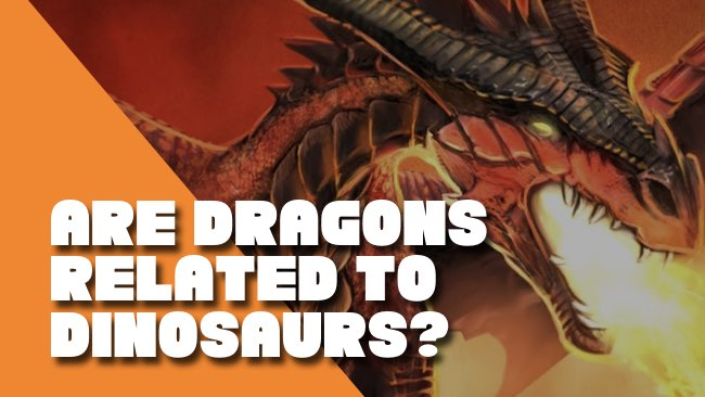 Are Dragons Related to Dinosaurs