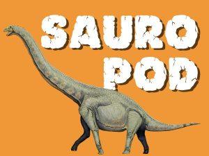 sauropod sleeping